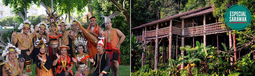 Rainforest World Music Festival.jpg