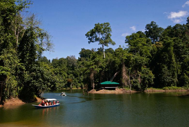Malasia Viajes   Paseo en barco, Royal Belum Rainforest
