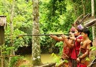Malasia-Viajes-Borneo-Sarawak-Cerbatana-Batang Ai-781x526.jpg