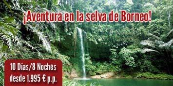 Banner_Aventura_Selva_1.jpg