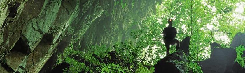 Parque nacional mulu.jpg